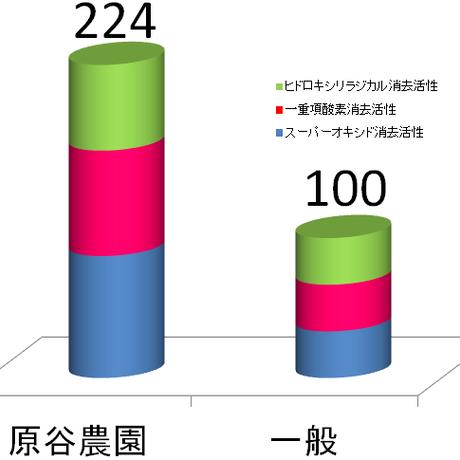 原谷農園の奇跡の抗酸化人参(5kg)