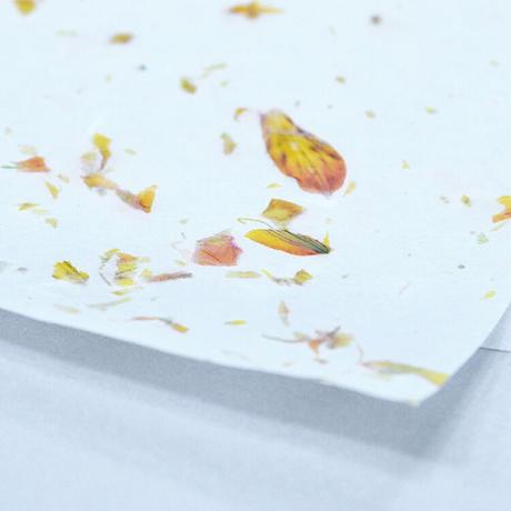 花和紙 invisible flower MAI
