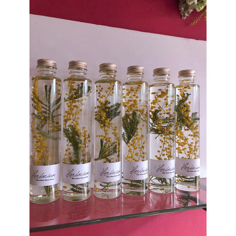 Herbarium(ハーバリウム)花の標本ミモザ(BOX付)