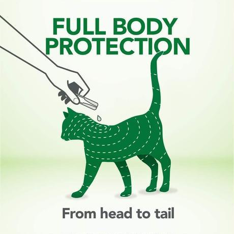 猫用 のみだに用スポットオン 4本入 NEW 猫のノミダニ用スポット最長4ヶ月分。1本1ヶ月の4本入 天然オイルのみ