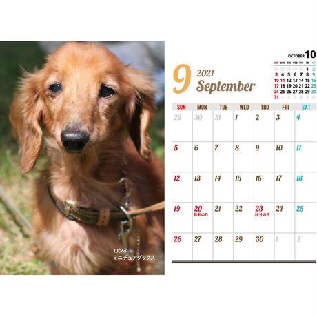 2021アニプロオリジナル 犬 チャリティーカレンダー B6卓上