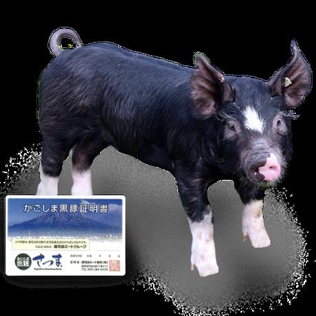 夏の肉祭‼メーカー協賛★大特価【国産ブランド豚の最高峰】かごしま黒豚さつまバラ3mmスライス 500g