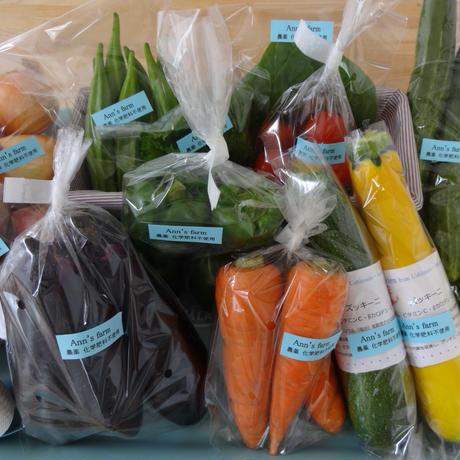 おためし☆季節の野菜セット農薬化学肥料不使用
