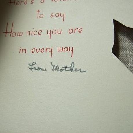 バレンタインカード しまうまのカード c-262