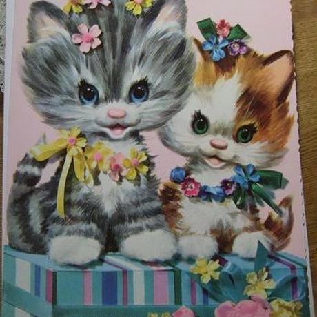 猫のメッセージカード c-2653
