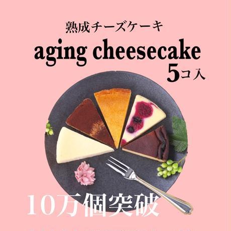 熟成チーズケーキ  5個入り(カット済)