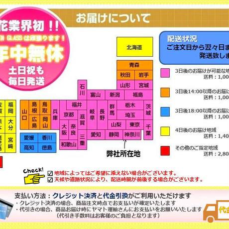 フラワーベース NWG10  本体価格¥157 税込卸価格⇒