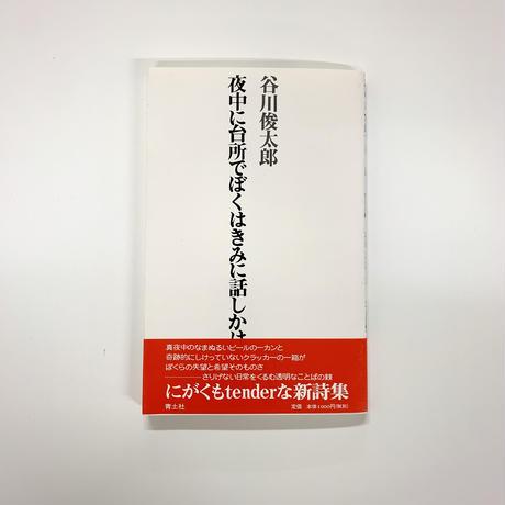 谷川俊太郎『夜中に台所でぼくはきみに話しかけたかった』