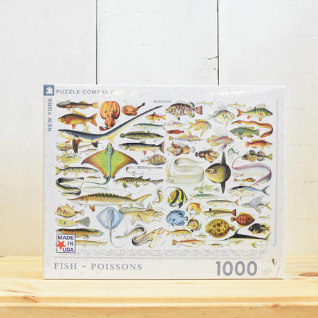 "New York Puzzle Company Nature Series ""Fish""1000pc/ニューヨークパズルカンパニー ネイチャーシリーズ フィッシュ 1000ピース"