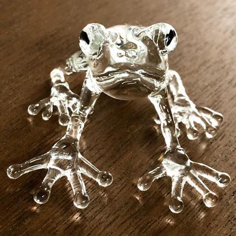 frog/透明のカエル