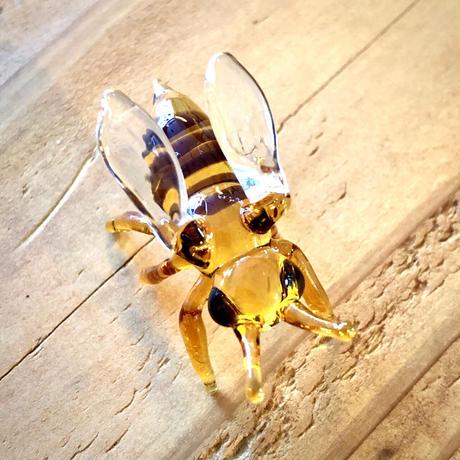 Honey bee/ミツバチ