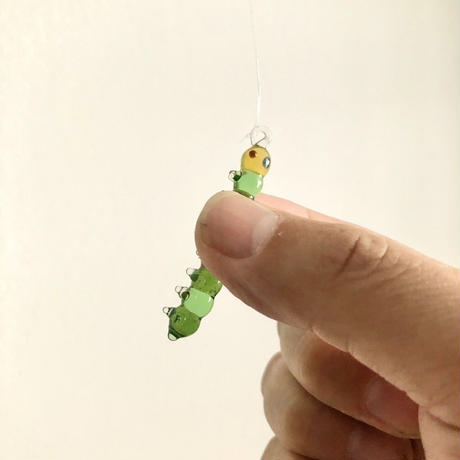 幼虫 caterpillar