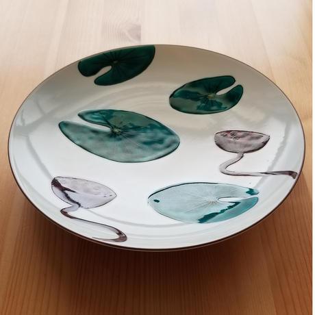 九谷焼 大皿 はす