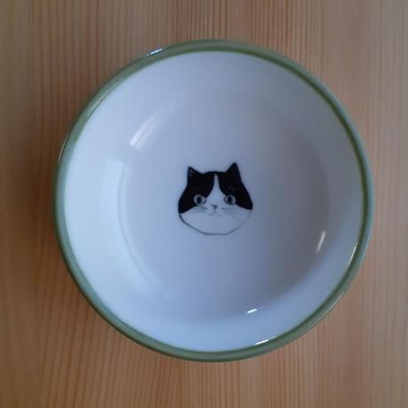 こばち ネコ・イヌ・ブタ