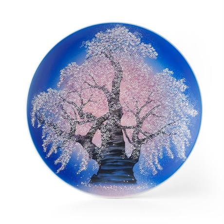 夜桜 飾皿