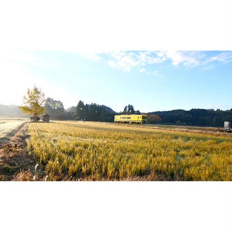 ドローン × 4Kカメラ動画・映像【Healing Blue Airヒーリングブルー・エア】小湊鐵道・いすみ鉄道〈動画約44分, approx44min.〉感動のドローン × 4Kカメラ