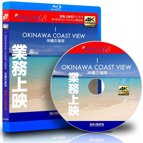 業務上映用4Kカメラ映像【HealingBlueBヒーリングブルーB】沖縄の海岸-1〈動画約100分〉