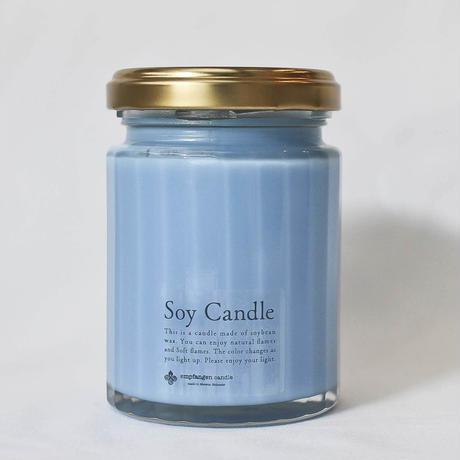 トラベルキャンドルSOY candle Blue / empfangen candle