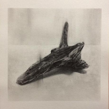 布谷文明 / driftwood