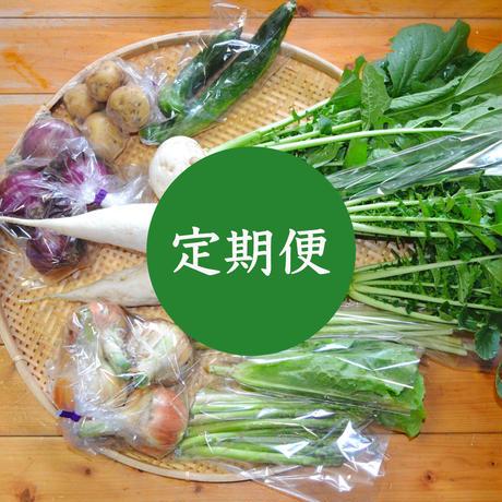 【定期便】おまかせ野菜セット(大)