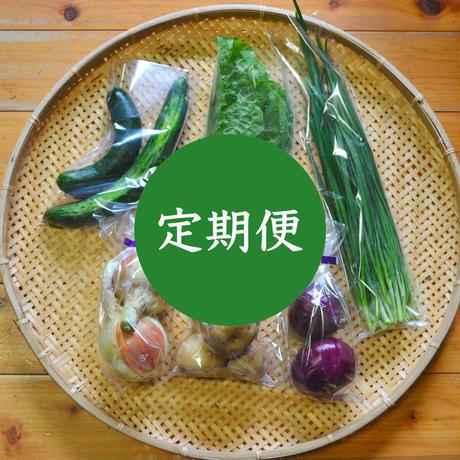 【定期便】おまかせ野菜セット(小)