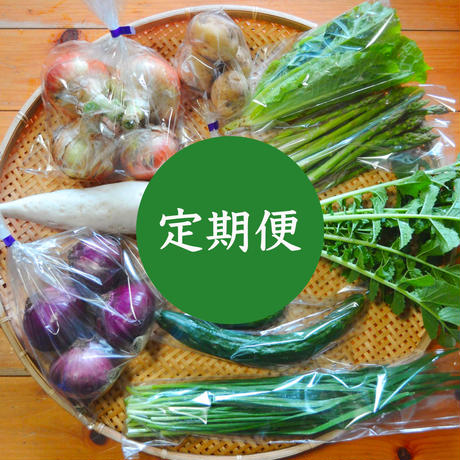 【定期便】おまかせ野菜セット(中)