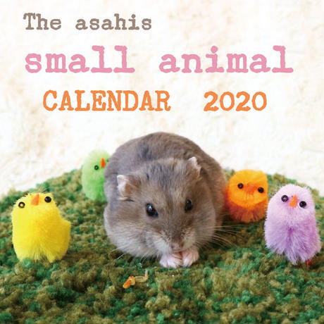 【送料無料】2020年『asahi』壁掛けカレンダー