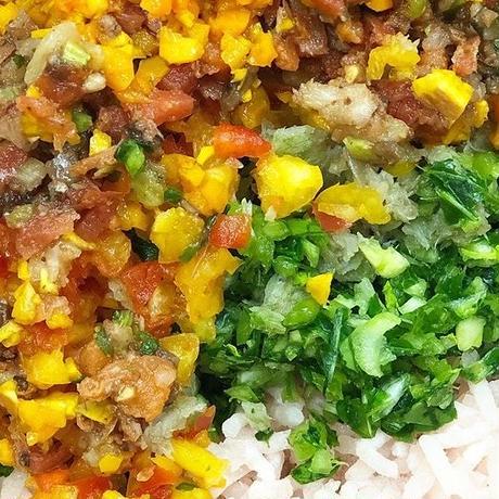 【メルト入りで腸が喜ぶ薬膳フード!】愛犬のためのご飯100g 鶏肉タイプ・豚肉タイプ