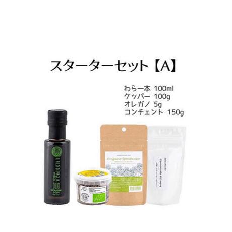 スターターセット専用★ギフトBOX