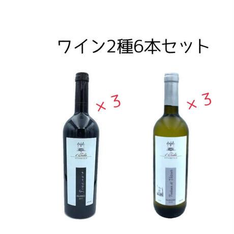 ワイン2種(赤3+白3)6本セット