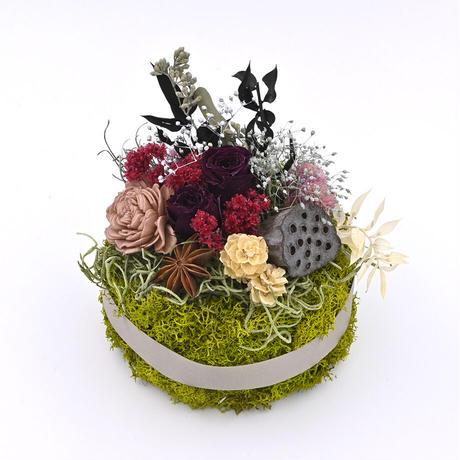 Petite Dried Flowers Seasons S201101y