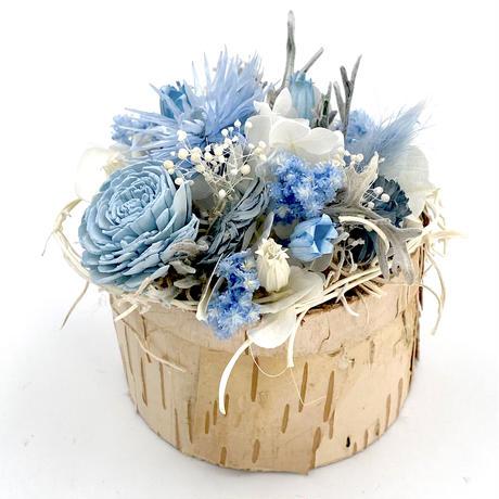 Petite Dried Flowers|しらかば  mini