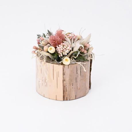 Petite Dried Flowers しらかば  mini  ピンク