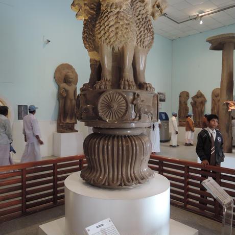 【5月19日20時配信予定】Ryoshoさんが案内する インド仏教聖地『サールナート』オンラインツアー