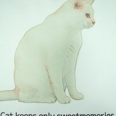 【何思う?孤高の哲人☆白ネコくん】白猫ネコ好き長袖Tシャツ白猫☆白ネコ長袖Tシャツ【サイズ:S 、XM(大きめM)、L、XL 】【5000円以上で】送料無料 Tシャツ メンズ 長袖 ロンT 猫はうれし