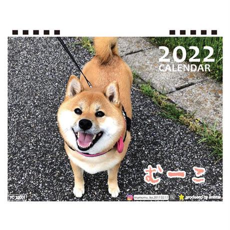 【予約販売】 柴犬のむーこ 2022年 卓上 カレンダー TC22061
