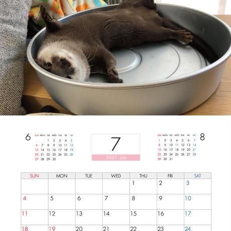 【予約販売】 カワウソ さくら 2021年 壁掛けカレンダー KK21026