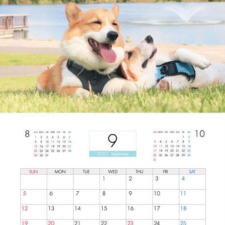 【予約販売】 初めてのコーギー  2021年 壁掛けカレンダー KK21022