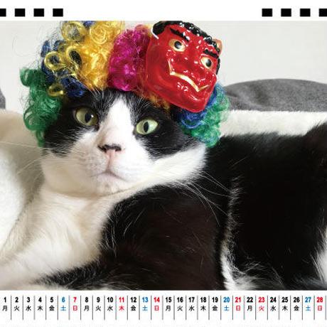 【予約販売】 猫のこてつとはなび 2021年 卓上カレンダー TC21089
