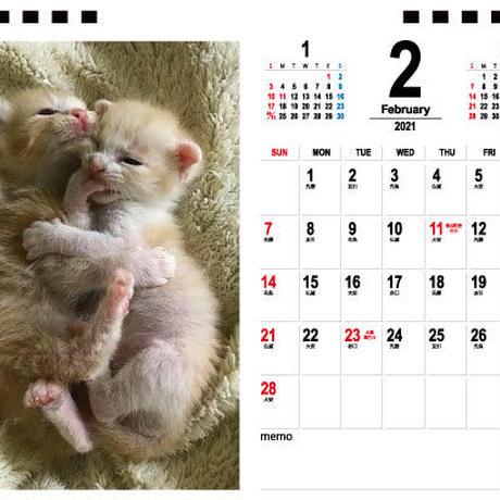 【予約販売】 ミドリさんちの猫ちゃん達 2021年 卓上カレンダー TC21110