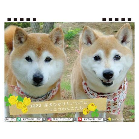 【予約販売】 柴犬ひかりといちごとおともだち 2022年 卓上 カレンダー TC22030