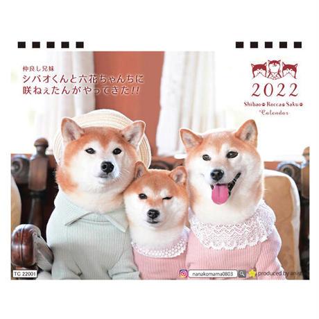 【予約販売】 柴犬 シバオくんと六花ちゃん 2022年 卓上 カレンダー TC22158