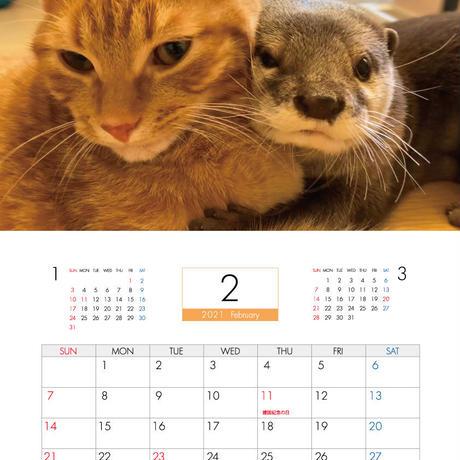 【予約販売】 カワウソ さくら 猫 もち 2021年 壁掛けカレンダー KK21027
