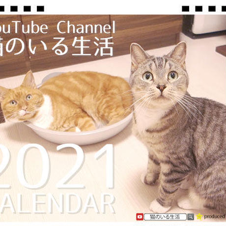 【予約販売】 猫のいる生活 2021年 卓上カレンダー TC21094