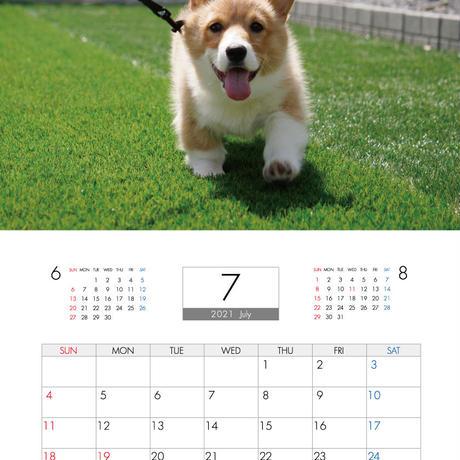 【予約販売】 コーギー モナ 2021年 壁掛けカレンダー KK21063
