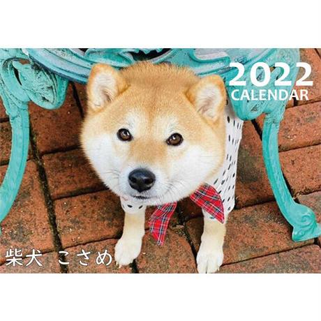 【予約販売】 柴犬 こさめ 2022年 壁掛け カレンダー KK22014