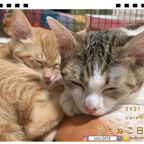 【予約販売】 うちねこ日和 子猫 2021年 卓上カレンダー TC21019
