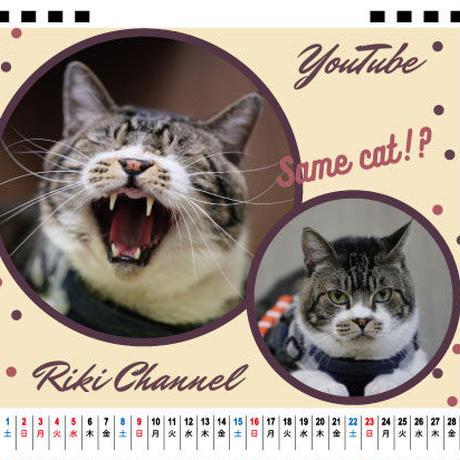 【予約販売】 猫のリキちゃんねる 2021年 卓上カレンダー TC21008