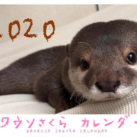 【送料無料】2020年『カワウソさくら』壁掛けカレンダー