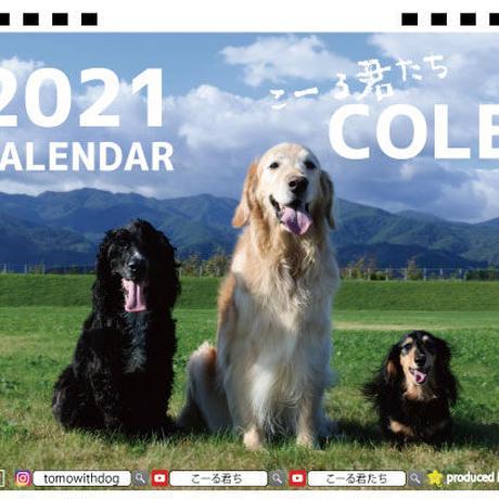 【予約販売】 ゴールデンレトリバー こーる君たち 2021年 卓上カレンダー TC21125